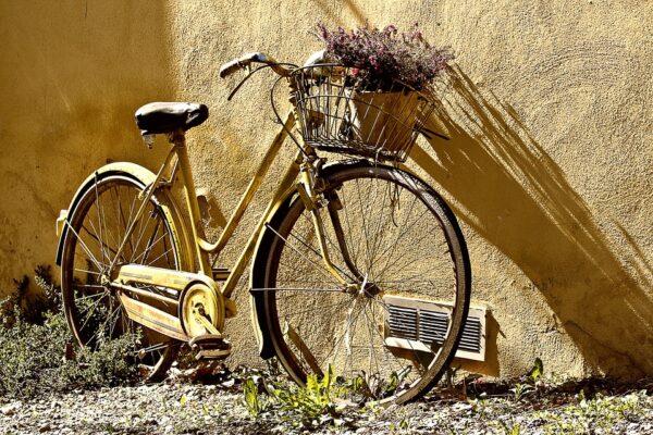 categoria biciclette