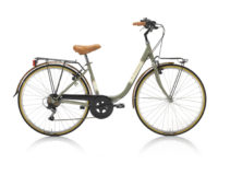 Bicicletta ERGOSHAPE