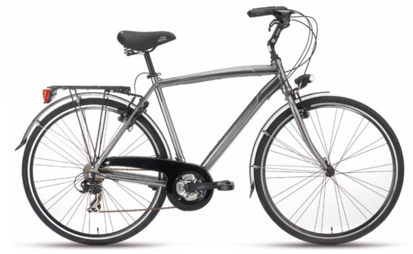city bike voyager man